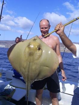 Stingray común Pesca Deportiva Cavalier & Blue Marlin Gran Canaria