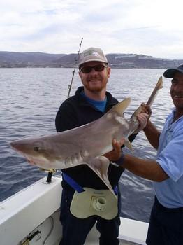 03/01 Tope Cavalier & Blue Marlin Sport Fishing Gran Canaria