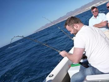 Hard Job Cavalier & Blue Marlin Sport Fishing Gran Canaria