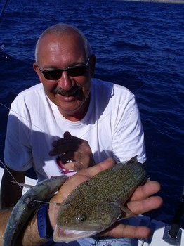 Lizardfish Cavalier & Blue Marlin Sport Fishing Gran Canaria
