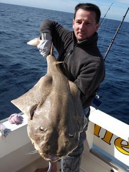 07/01 Angel shark Cavalier & Blue Marlin Sport Fishing Gran Canaria