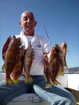 09/01 Combers Cavalier & Blue Marlin Sport Fishing Gran Canaria