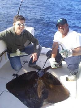 18/01 Common Stingray Cavalier & Blue Marlin Sport Fishing Gran Canaria