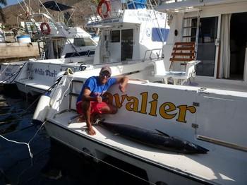 Wahoo 42 kg Cavalier & Blue Marlin Sport Fishing Gran Canaria