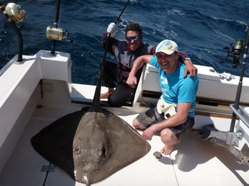 23/02 Common Stingray Cavalier & Blue Marlin Sport Fishing Gran Canaria