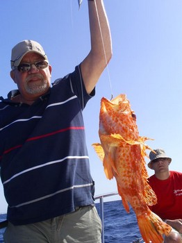Scorpion fish Cavalier & Blue Marlin Sport Fishing Gran Canaria
