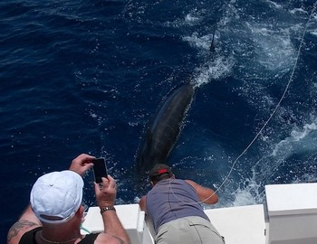 02/06 Blue Marlin Cavalier & Blue Marlin Sport Fishing Gran Canaria
