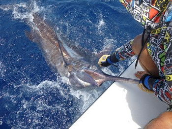 05/06 Blue Marlin Cavalier & Blue Marlin Sport Fishing Gran Canaria