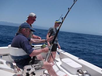 Fighting Cavalier & Blue Marlin Sport Fishing Gran Canaria