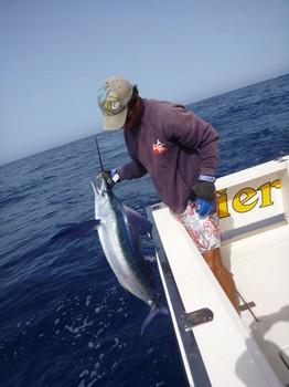 Welcome aboard Cavalier & Blue Marlin Sport Fishing Gran Canaria