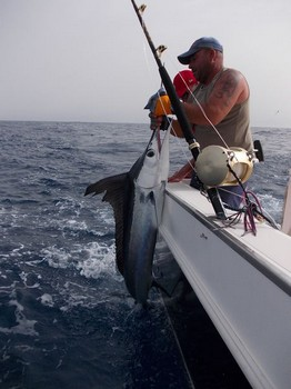 Welcome aboard Cavalier & Blue Marlin Sport Fishing Gran Canaria