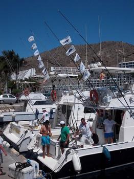 Tuna Flags Festival Cavalier & Blue Marlin Sport Fishing Gran Canaria