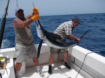 10/08 White Marlin Cavalier & Blue Marlin Sport Fishing Gran Canaria