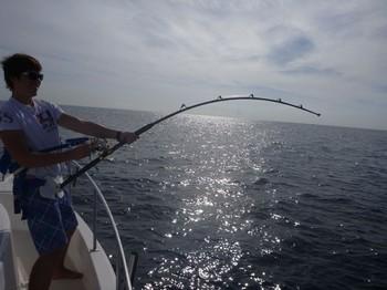 26/10 conectado Pesca Deportiva Cavalier & Blue Marlin Gran Canaria