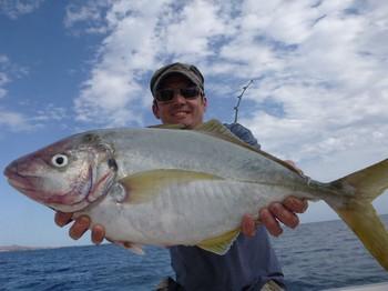 8/11 Yellowtail Cavalier & Blue Marlin Sport Fishing Gran Canaria