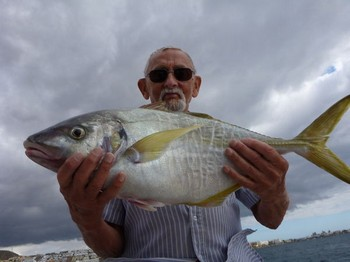 19/11 Yellow tail Cavalier & Blue Marlin Sport Fishing Gran Canaria