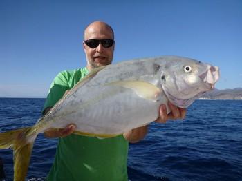 12/12 Yelowtail jack Cavalier & Blue Marlin Sport Fishing Gran Canaria