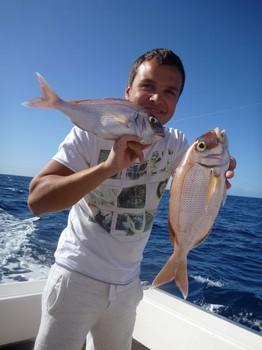 January Photo Archve 2013 Cavalier & Blue Marlin Sport Fishing Gran Canaria