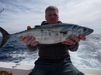 02/03 North Atlantic Bonito Cavalier & Blue Marlin Sport Fishing Gran Canaria