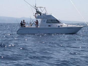 boat Cavalier Cavalier & Blue Marlin Sport Fishing Gran Canaria