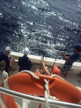 boat Cavalier - Boat Cavalier Cavalier & Blue Marlin Sport Fishing Gran Canaria