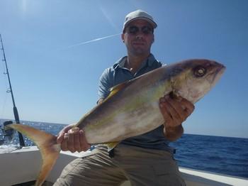 Amberjack atrapado por Michael Andersen de Dinamarca Pesca Deportiva Cavalier & Blue Marlin Gran Canaria