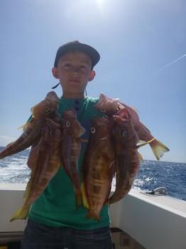 Comber - Buena captura de pez peinadora en el barco Cavalier Pesca Deportiva Cavalier & Blue Marlin Gran Canaria