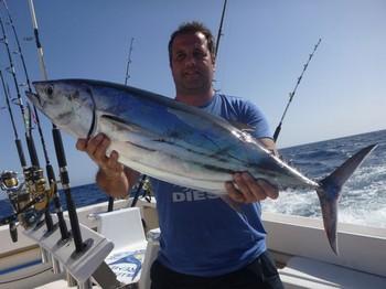 Skipjack Tuna - Stephen de Inglaterra muestra un hermoso Skipjack Tuna Pesca Deportiva Cavalier & Blue Marlin Gran Canaria