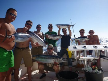 Satisfied Fishermen - Satisfied fishermen are showing their cath Cavalier & Blue Marlin Sport Fishing Gran Canaria