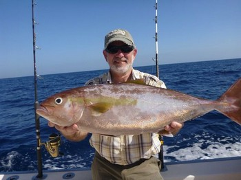 Amberjacks - Great catch on the boat Cavalier Cavalier & Blue Marlin Sport Fishing Gran Canaria