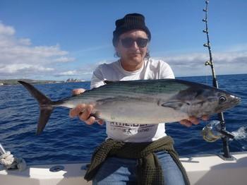 Atlantic Bonito - North Atlantic Bonito caught by Patrick from England Cavalier & Blue Marlin Sport Fishing Gran Canaria