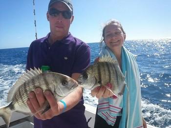 Zebra Breams Cavalier & Blue Marlin Sport Fishing Gran Canaria