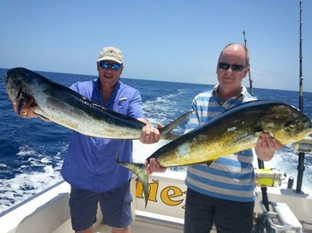 Dorado's caught by Tony from England Cavalier & Blue Marlin Sport Fishing Gran Canaria
