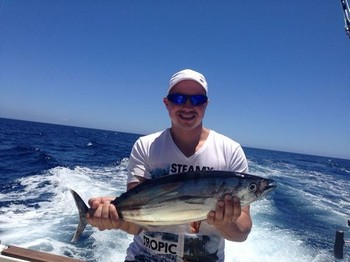 Skipjack Tuna Cavalier & Blue Marlin Pesca sportiva Gran Canaria