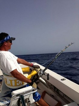 Hooked Up - Hafid from the boat Cavalier fighting a Big Eye Tuna Cavalier & Blue Marlin Sport Fishing Gran Canaria