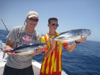 Skipjack Tuna - Skipjacks caught on the boat Cavalier Cavalier & Blue Marlin Sport Fishing Gran Canaria