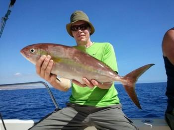 Amberjack - Seppo Tatula from Finland on the Cavalier Cavalier & Blue Marlin Sport Fishing Gran Canaria