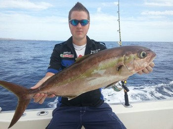 Amberjack - Nice Amberjack caught by Marcus Jansson from Sweden Cavalier & Blue Marlin Sport Fishing Gran Canaria
