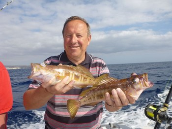 Comber fish - Some nice Combers caught by Clement from Belgium Cavalier & Blue Marlin Sport Fishing Gran Canaria