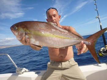 Amberjack caught by Leo Haak from Holland Cavalier & Blue Marlin Sport Fishing Gran Canaria