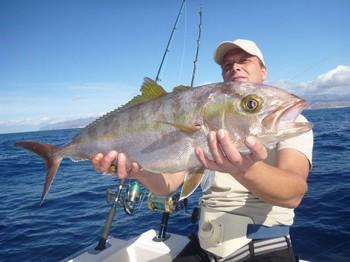 Amberjack - Greater Amberjack caught by Sander Martens on the Cavalier Cavalier & Blue Marlin Sport Fishing Gran Canaria