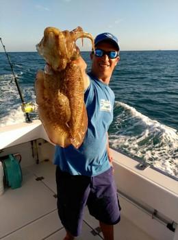 Cuttlefish Cavalier & Blue Marlin Sport Fishing Gran Canaria