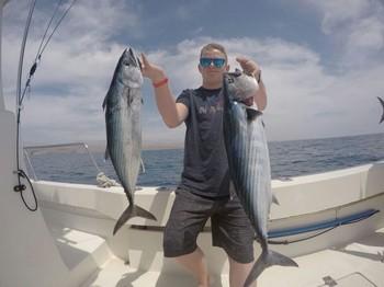 North Atlantic Bonito - Frederik Velsen from Norway Cavalier & Blue Marlin Sport Fishing Gran Canaria