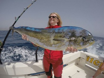 Dorado - Christina Johansson from Sweden Cavalier & Blue Marlin Sport Fishing Gran Canaria