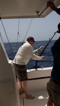 Hooked Up - Darrel Cooper del Reino Unido Pesca Deportiva Cavalier & Blue Marlin Gran Canaria