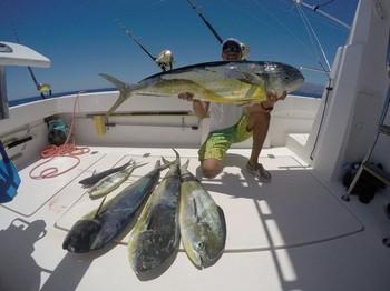 Dorado's - Hafid shows a nice catch of Dorado's Cavalier & Blue Marlin Sport Fishing Gran Canaria