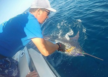 Great Catch - Blue Marlin tagged and released by Barry Towsend Cavalier & Blue Marlin Sport Fishing Gran Canaria