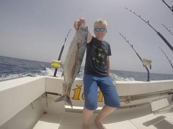 Bonito del Atlántico Norte - Sonder Nese Waldron de Noruega Pesca Deportiva Cavalier & Blue Marlin Gran Canaria