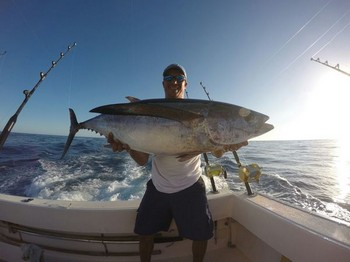 Atún blanco - Atún blanco de buen tamaño Pesca Deportiva Cavalier & Blue Marlin Gran Canaria