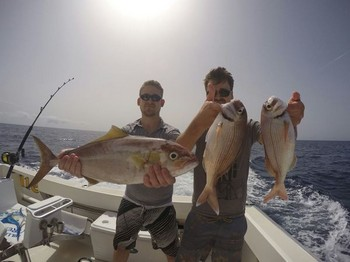 Nice catch - Amberjack & Snappers  caught by Duncan  and Stuart  Brown Cavalier & Blue Marlin Sport Fishing Gran Canaria